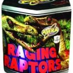 Raging Raptors